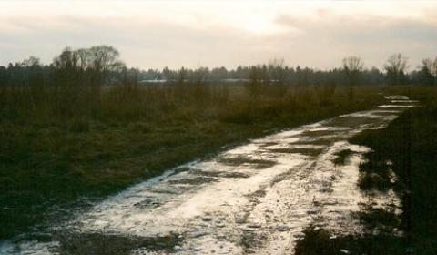 alte Kiesgrube zwischen Westkreuz und Lochham