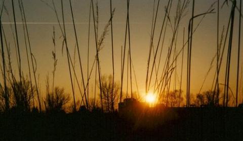 Sonnenuntergang im Münchner Westen